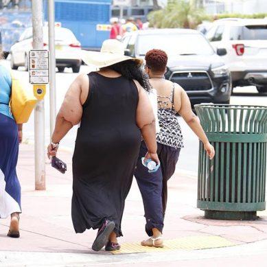 ¿Los microorganismos podrían estar detrás del origen de la obesidad?