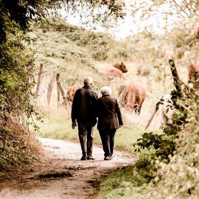 Un estudio de la UGR analiza el porqué las personas mayores viven solas