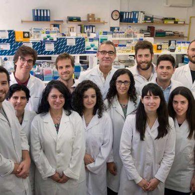 Un equipo de la UCM gana el Premio Nacional de Resistencia a Antibióticos