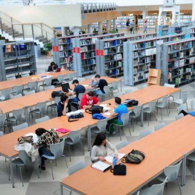 Estudiar en la Pablo de Olavide: consulta los horarios de la biblioteca