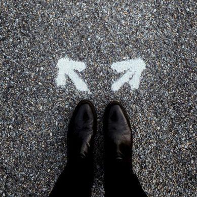 Objetivo empleabilidad: elige la carrera con cabeza