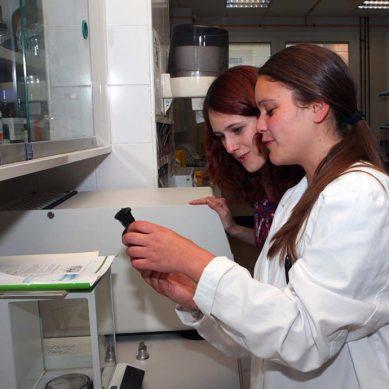 Un blog para crear referentes femeninos en investigación científica