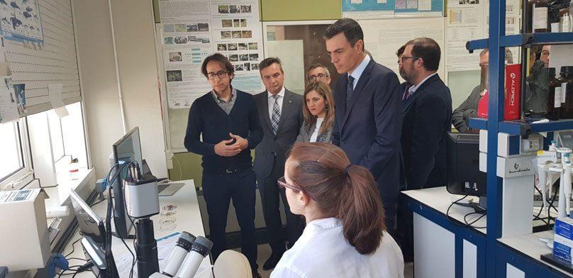 """Pedro Sánchez: """"no es posible la política sin la ciencia"""""""