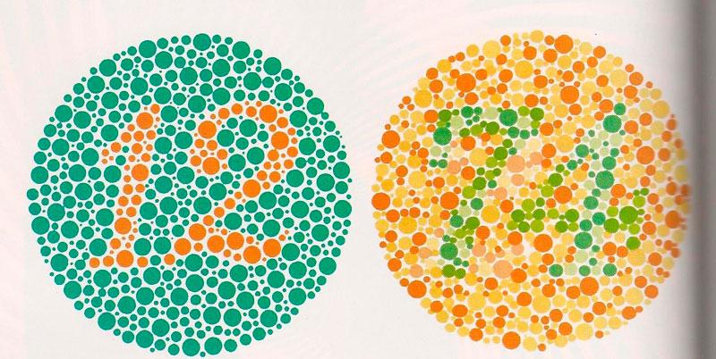 Las gafas que devuelven el color, desmontadas por la UGR