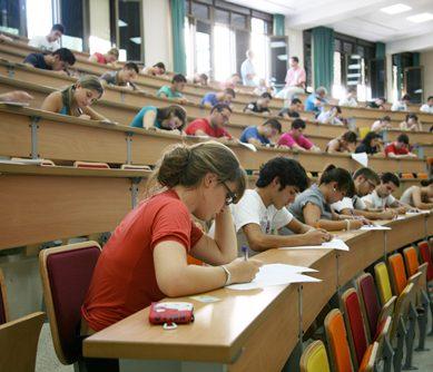 Magisterio y Trabajo Social, las titulaciones con menos empleo