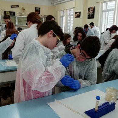 Un proyecto sobre la búsqueda de nuevos antibióticos reconocido con el Premio a la Divulgación Científica de la UJA