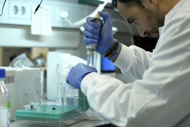 El Gobierno aprueba las ayudas Beatriz Galindo para atraer investigadores en el extranjero a las universidades españolas