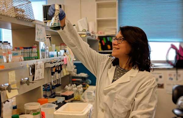 'Cianobacterias', las bacterias fotosintéticas que inventaron el mundo