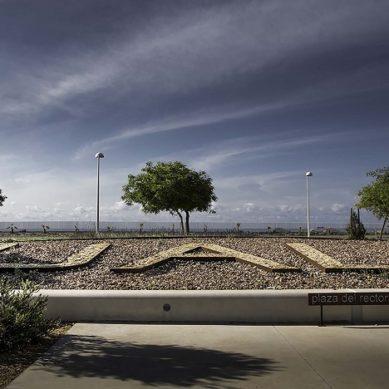 La Universidad de Almería se queda a un paso de los Premios Goya 2020