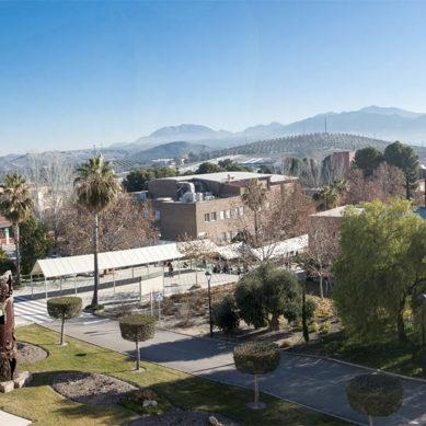 En remoto desde la UJA: conéctate a la vida universitaria jiennense