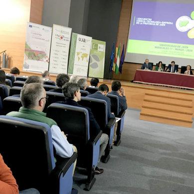 Reunión estratégica en la UJA para generar un ecosistema de la innovación en la provincia