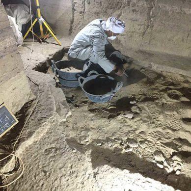 Investigadores de la UJA regresan de Egipto ante el aumento de personas afectadas por el Covid-19