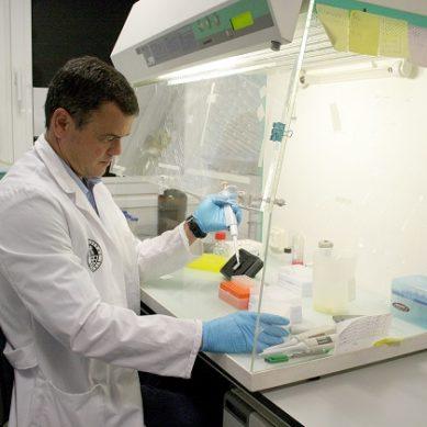 Identifican un gen asociado al sistema inmune que mejoraría la vacuna del VIH
