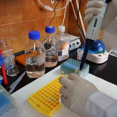 La UMA abre un proceso de contratación laboral para 31 investigadores