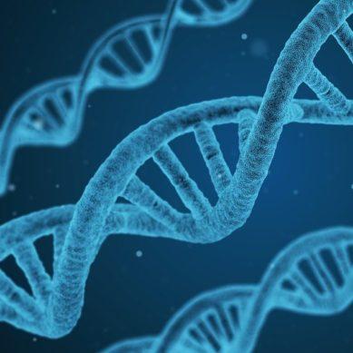 Investigan el material genético del virus para identificar nuevas dianas terapéuticas
