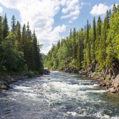 Un modelo hidrológico avanza en la construcción de un mapa mundial del agua