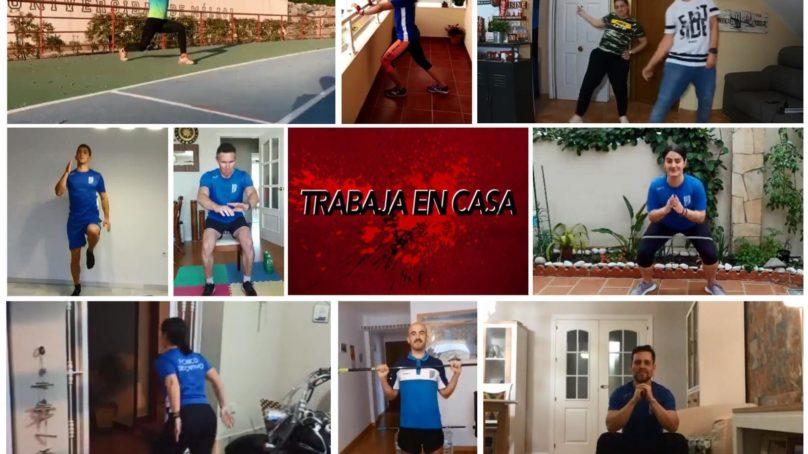 Deporte y salud en abierto para toda la comunidad universitaria malagueña