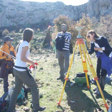 Identifican nuevas especies de hongos que facilitan la comunicación entre los árboles y su supervivencia