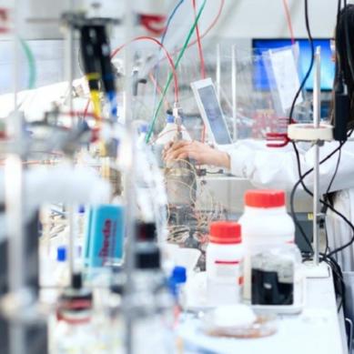 Proyectos ganadores de Ciencia CreActiva, el concurso escolar que pone en valor el trabajo de investigadoras españolas