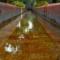 La URJC colabora en el estudio de la electroquímica para eliminar contaminantes orgánicos en aguas residuales