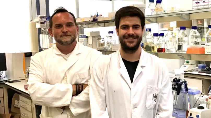 Investigadores de la UCA obtienen a partir de una microalga una proteína que inhibe el crecimiento tumoral