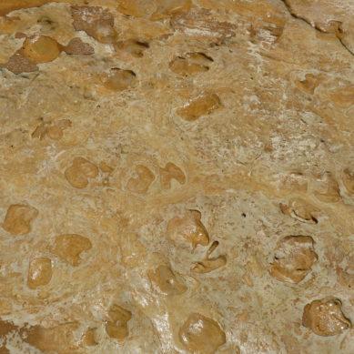 Investigadores de la UHU estudian las huellas fósiles aparecidas en la playa de Matalascañas