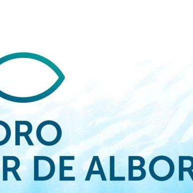Convocatoria de becas CEI-Mar para que alumnos UAL asistan al I Foro Mar de Alborán