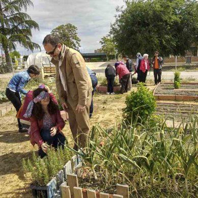 Plantas aromáticas y 'macrofotografía' para celebrar el Día Mundial del Medio Ambiente