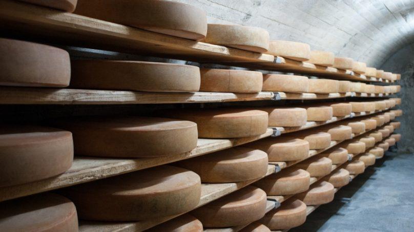 Un método diseñado en la UCO permite identificar la presencia de desinfectantes en quesos comerciales