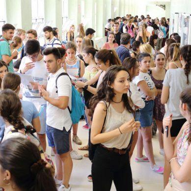 ¿Sabes cuáles son los estudios con más empleabilidad en Andalucía?