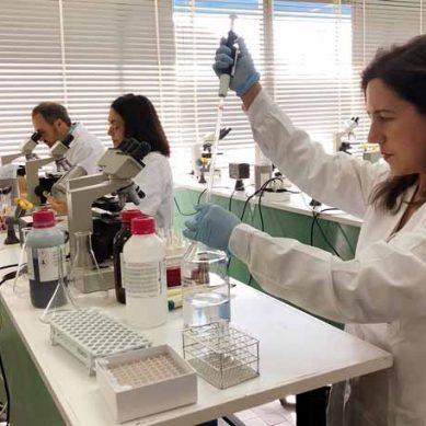 ¿Cuál es el origen de la Hepatitis A? Científicos de la UMA lo buscan