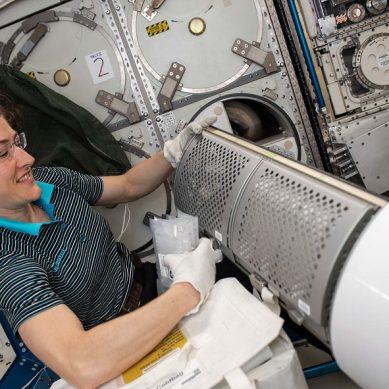 De la UAL a la NASA para liderar una investigación para mejorar la salud humana