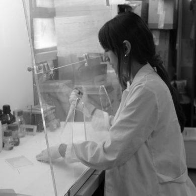 Los jóvenes científicos españoles ya tienen su propia Academia