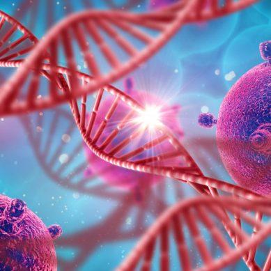 Descifrando la historia a través de nuestro ADN