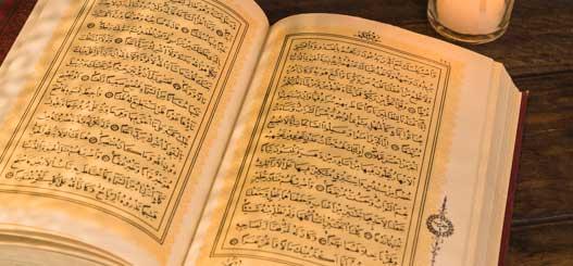 ¿Cuál es tu palabra favorita en árabe?