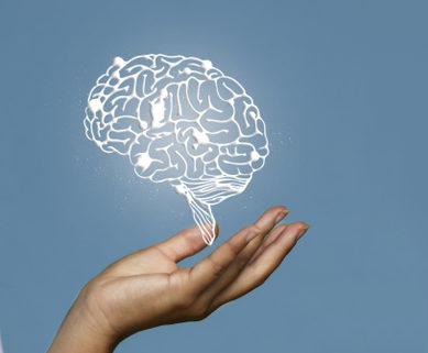 XVI Curso Nacional de Neurociencia ¿cuánto sabes del cerebro?