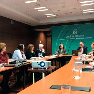 Conoce a los cuatro nuevos presidentes de los Consejos Sociales de Andalucía