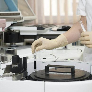 Ayudas para fomentar la investigación científica de excelencia