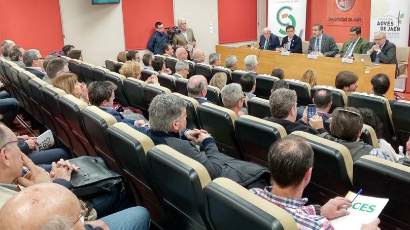 Jornada de debate para analizar la repercusión de la Política Agrícola Común en la oleicultura jienense