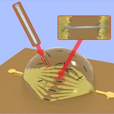 Investigadores de la UAM desarrollan un nuevo método para la manipulación sin contacto de nanohilos semiconductores