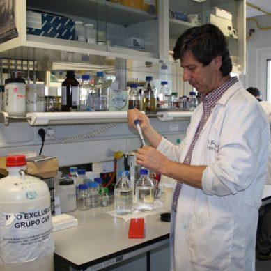 Investigan cómo afecta el Covid-19 al sistema cardiovascular