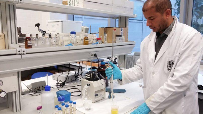 Desarrollan un nuevo método para detectar compuestos químicos perjudiciales en alimentos