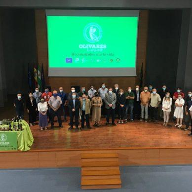 Aceites procedentes de 'Olivares Vivos' para promover la biodiversidad en el sector