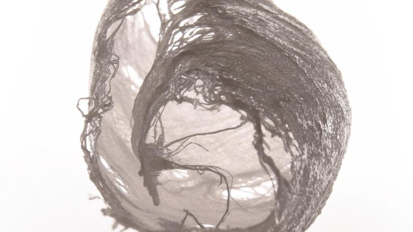 Máster en Prácticas Artísticas Contemporáneas, el arte más allá de las aulas