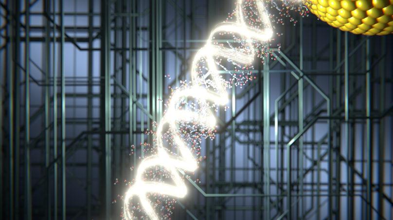Hacia una nanoelectrónica basada en ADN