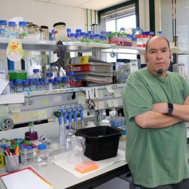 Fallece José Luis Gómez-Skármeta, investigador de excelencia en biología del desarrollo del CABD