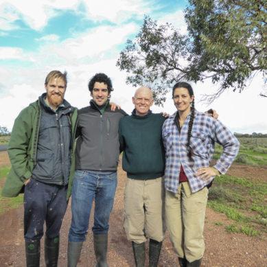 Investigan los cambios históricos en la estructura y el funcionamiento de ecosistemas terrestres