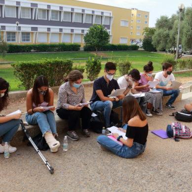 Cinco titulaciones de la Universidad Pablo de Olavide cuentan aún con plazas libres