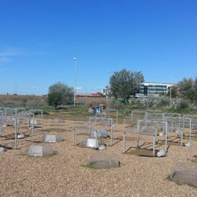 El Campus de la UPO, un laboratorio para medir el impacto del cambio climáticos en las zonas verdes urbanas
