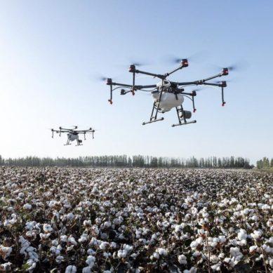 Drones para prevenir y extinguir incendios forestales